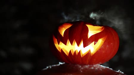 malice : Burning pumpkin on Halloween. Looped Stock Footage