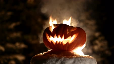 терпение : Burning pumpkin on Halloween. Looped Стоковые видеозаписи