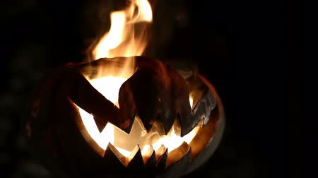czary : Burning pumpkin on Halloween. Looped Wideo