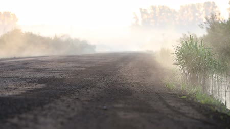vernal : Fog crawls out onto the road Stock Footage