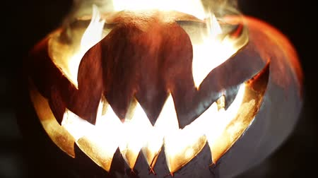 malice : Halloween pumpkin. Looped Stock Footage