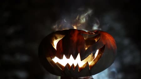 hatred : Halloween pumpkin. Looped Stock Footage