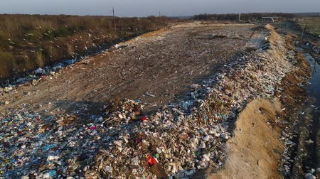 wasteland : Dumps that pollute the environment. Destruction of the ecosystem. Hungry birds