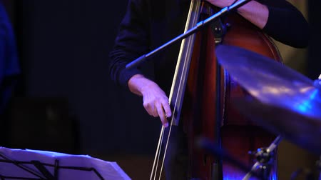 Fast motion of the musicians fingers. The music sounds from the double bass.