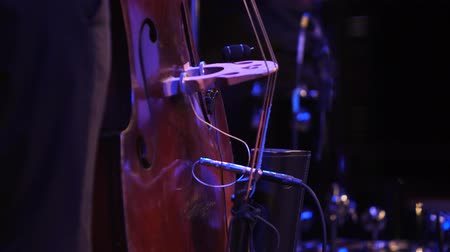 захват : Double bass player contrabass playing. Jazz bassist.