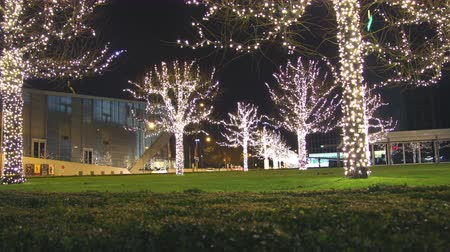luxe : GENEVA – DECEMBER 2014 : Christmas in Geneva timelapse with tracking shot. Find similar in our portfolio.