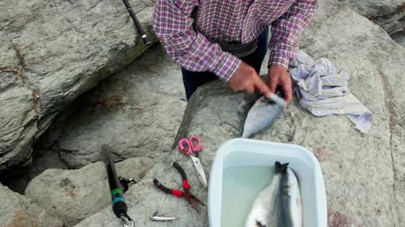 Close up of senior man hands removing fish scales with a scaler over the rocks