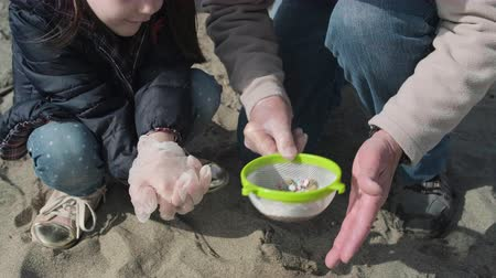 işbirliği yapmak : Detail of hands holding colander with microplastics on the beach