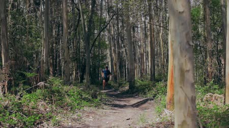 Young man participating in a trail race through the forest Stock Footage