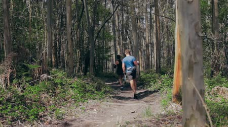 тростник : Young woman and man participating in a trail race through the forest