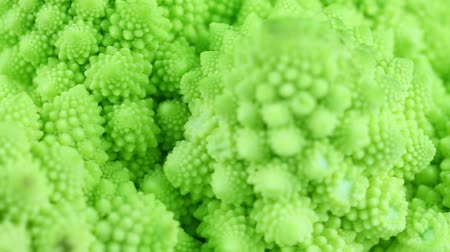 logarithm : tracking along some romanesco cabbage