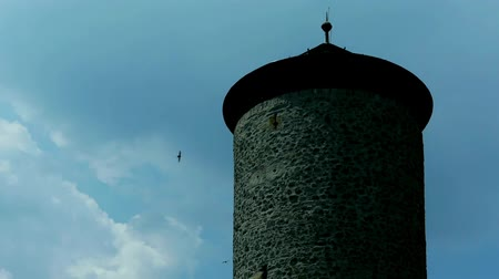 wróżba : an old stone tower is shown, lots of birds come and go continuously Wideo
