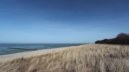 дюна : Baltic Sea - Beach with Dunes and Grass waving Стоковые видеозаписи
