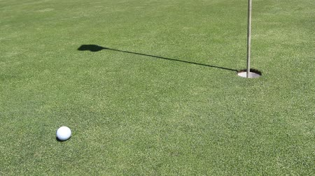 delikleri : a golfer makes his hit, ball runs in hole Stok Video