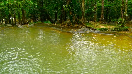 gyertyafa : Bright colorfull natural pool in exotic rainforest. Tropical jungle landscape