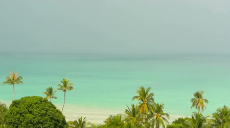 bulutluluk : Paradise island exotic beach, tropical plants before rain swaing in the wind Stok Video