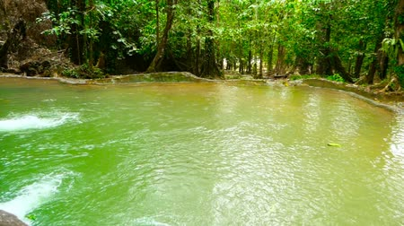 raiz : Bright colorfull natural pool in exotic rainforest. Tropical jungle landscape