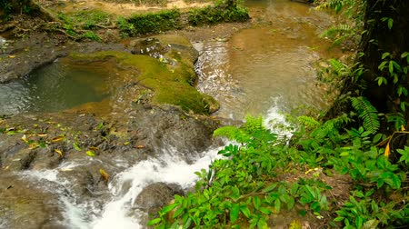 rohanó : Clear water flows down cascades of waterall rapids in tropical rainforest