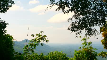 landscaping rocks : View of the valley with mountains in the background through the bamboo leaves