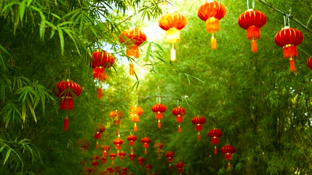 brotos : Rows of traditional chinese style red lanterns hanging on bamboo tree tunnel arch. Decoration lamps for Chinese Lunar New Year festival. Tropical oriental garden. Bamboo fresh green leaves background. Vídeos