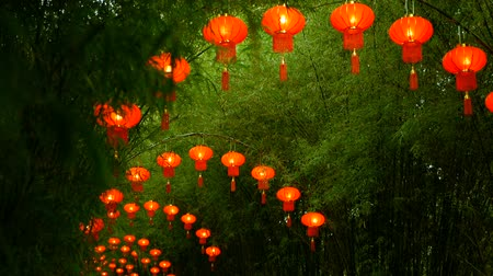 hajtások : Rows of traditional chinese style red lanterns hanging on bamboo tree tunnel arch. Decoration lamps for Chinese Lunar New Year festival. Tropical oriental garden. Bamboo fresh green leaves background. Stock mozgókép