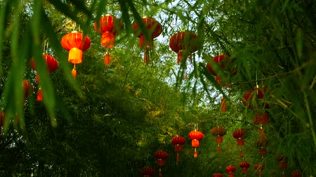 shui : Rows of traditional chinese style red lanterns hanging on bamboo tree tunnel arch. Decoration lamps for Chinese Lunar New Year festival. Tropical oriental garden. Bamboo fresh green leaves background. Stock Footage