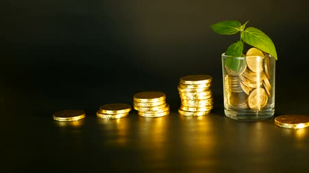 penny : Management efficiency. Stacks of golden coins near full glass and green leaf of sprout on black background. Success of finance business, investment, ideas. Rotating, twisting, swirling, spinning penny
