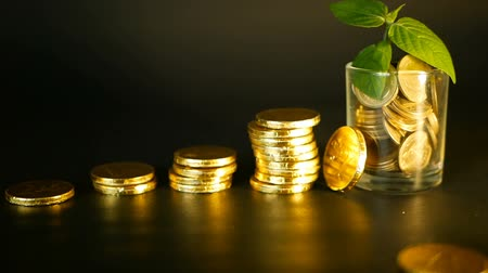 metafoor : Management efficiency. Stacks of golden coins near full glass and green leaf of sprout on black background. Success of finance business, investment, ideas. Rotating, twisting, swirling, spinning penny