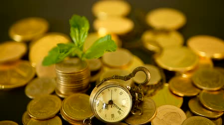 para kazanmak : Management efficiency, time is money. Vintage pocket watch with golden coins stack and green leaf, black background. Time for Success of Finance Business. Investment, business financial ideas concept Stok Video