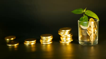 mevduat : Management efficiency. Stacks of golden coins near full glass and green leaf of sprout on black background. Success of finance business, investment, ideas. Rotating, twisting, swirling, spinning penny