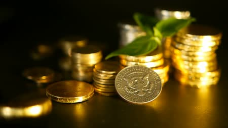 цент : Golden coins and green leaf of sprout on black background. Success of finance business, mortgage and real estate investment, retirement, saving plan for loan, deposit, wealth, banking concepts.