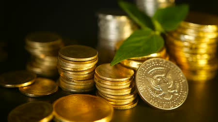 bank tower : Golden coins and green leaf of sprout on black background. Success of finance business, mortgage and real estate investment, retirement, saving plan for loan, deposit, wealth, banking concepts.