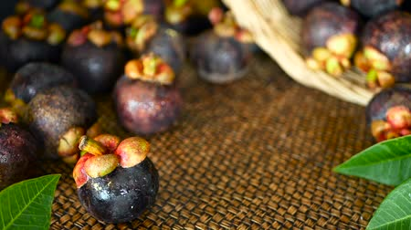 mangosteen : Top view selective focus Fresh delicious harvested mangosteens on wooden table. Thai Tropical Organic purple fruit in the basket. Exotic natural blurred background. Healthy food and eating concept. Stock Footage