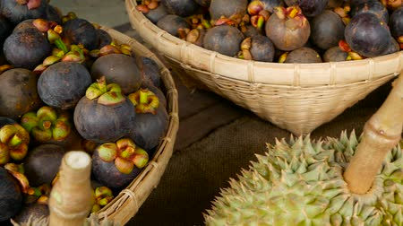 mangosteen : Mixed season tropical sweet juicy Fruits, local Thailand market. Large Monthong Durian, hard skin covered in sharp points and Mangosteen, King and Queen, most delicious antioxidant fresh exotic fruits