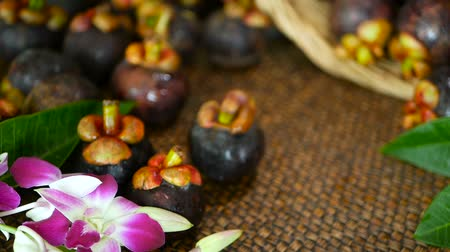 mangosteen : Top view of fresh delicious harvested mangosteens on wooden table. Thai organic purple fruit in the basket. Exotic natural blurred background with tropical flower. Healthy food and eating concept.