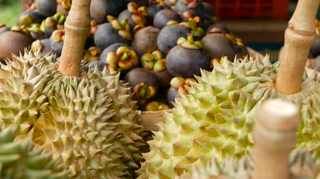 антиоксидант : Mixed season tropical sweet juicy Fruits, local Thailand market. Large Monthong Durian, hard skin covered in sharp points and Mangosteen, King and Queen, most delicious antioxidant fresh exotic fruits