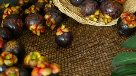 rainha : Top view selective focus Fresh delicious harvested mangosteens on wooden table. Thai Tropical Organic purple fruit in the basket. Exotic natural blurred background. Healthy food and eating concept. Stock Footage