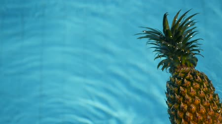 hidratar : Pineapple Floating In blue Water In Swimming Pool. Healthy Raw Organic Food. Juicy Fruit. Vegetarian, Vegan Nutrition, Vitamins, Diet, summer holidays, vacation concepts. Exotic tropical background Stock Footage