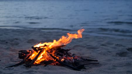 palivové dříví : Blazing campfire on the beach during summer evening. Bonfire in nature as background. Burning wood on white sand shore at sunset. selective focus. tropical romantic landscape near sea water edge. Dostupné videozáznamy