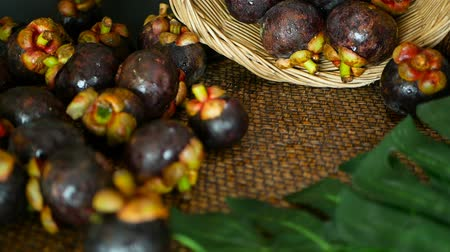 kraliçe : Top view selective focus Fresh delicious harvested mangosteens on wooden table. Thai Tropical Organic purple fruit in the basket. Exotic natural blurred background. Healthy food and eating concept. Stok Video