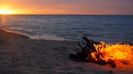 inflamável : Blazing campfire on the beach during summer evening. Bonfire in nature as background. Burning wood on white sand shore at sunset. selective focus. tropical romantic landscape near sea water edge. Vídeos