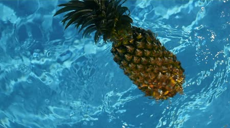 hydratace : Pineapple Floating In blue Water In Swimming Pool. Healthy Raw Organic Food. Juicy Fruit. Vegetarian, Vegan Nutrition, Vitamins, Diet, summer holidays, vacation concepts. Exotic tropical background Dostupné videozáznamy