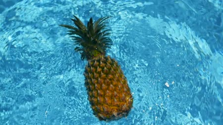 ananas : Pineapple Floating In blue Water In Swimming Pool. Healthy Raw Organic Food. Juicy Fruit. Vegetarian, Vegan Nutrition, Vitamins, Diet, summer holidays, vacation concepts. Exotic tropical background Stok Video