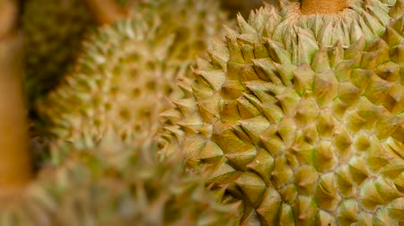 mal cheiroso : Asian king of fruits Durian is on the counter in the night market in Thailand. Durians are very large and the price is expensive. Exotic tropical fruit with green and prickly flesh has unusual taste.