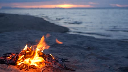 hořlavý : Blazing campfire on the beach during summer evening. Bonfire in nature as background. Burning wood on white sand shore at sunset. selective focus. tropical romantic landscape near sea water edge. Dostupné videozáznamy