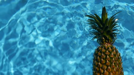 hidratáció : Pineapple Floating In blue Water In Swimming Pool. Healthy Raw Organic Food. Juicy Fruit. Vegetarian, Vegan Nutrition, Vitamins, Diet, summer holidays, vacation concepts. Exotic tropical background Stock mozgókép