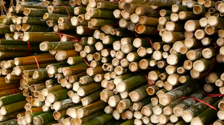 feixes : Round cross sliced bamboo trunk bundles in stack prepared for use as a building construction material in asia. Natural texture. Pile of cutted trees. Deforestation concept. decor and furniture source.
