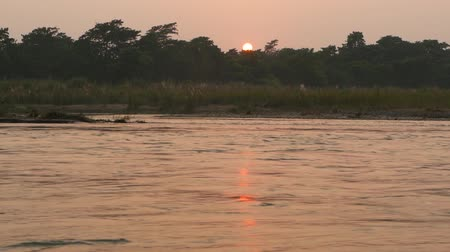 odrážející : Sunset on tranquil river in summer. Sun reflecting on calm water with green shore. Chitwan National Safari Park in Nepal. Terai - home for Bengal tiger, crocodiles, Indian rhinoceros, elephants Dostupné videozáznamy