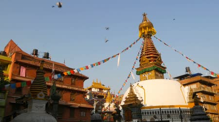 монастырь : Colorful prayer flags wawing in the wind over Stupa temple, Holy Pagoda, symbol of Nepal and Kathmandu with Buddhas Eyes. Sunset ligth. tibetan buddhism. Pigeons flying over ancient architecture.