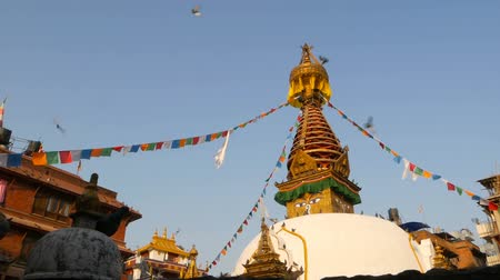Тибет : Colorful prayer flags wawing in the wind over Stupa temple, Holy Pagoda, symbol of Nepal and Kathmandu with Buddhas Eyes. Sunset ligth. tibetan buddhism. Pigeons flying over ancient architecture.